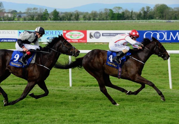 Cleveland (Camelot) Wins At The Curragh