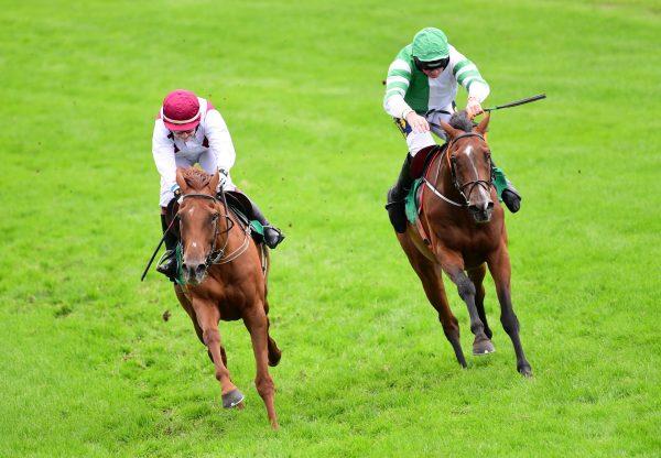 Quiet Escape (Getaway) Wins Her Bumper At Downpatrick