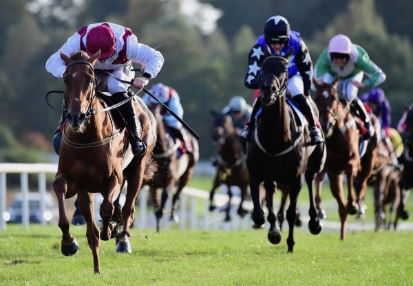 Quiet Escape (Getaway) Wins The Listed Mares Bumper At Gowran Park