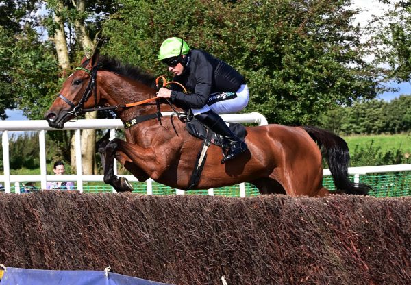 Reddys Island (Soldier Of Fortune) Wins The 4 Yo Mares Maiden At Oldcastle