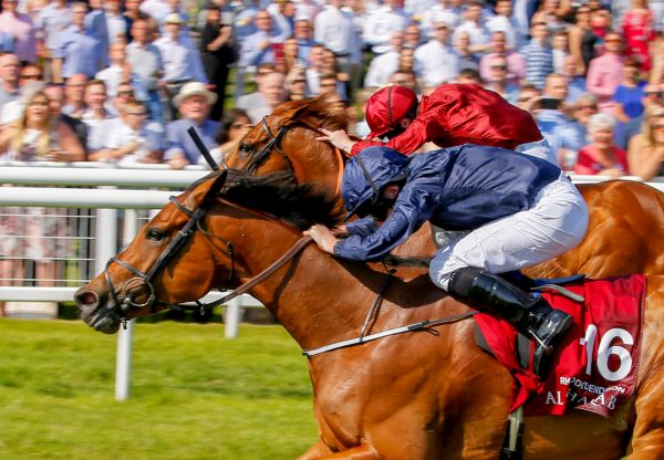 Rhododendron (Galileo) winning the G1 Lockinge Stakes at Newbury