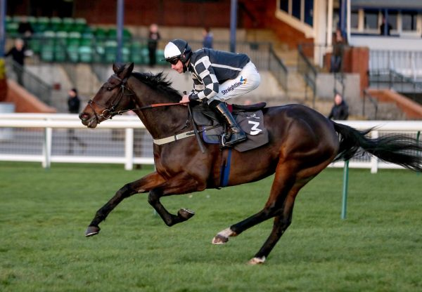 Western Honour (Westerner) Gains His Second Win Over Hurdles At Ayr