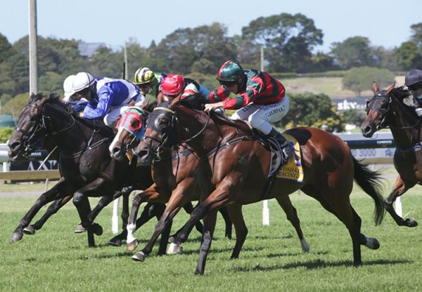 Rocket Spade (Fastnet Rock) winning the Gr.2 Avondale Guineas at Ellerslie