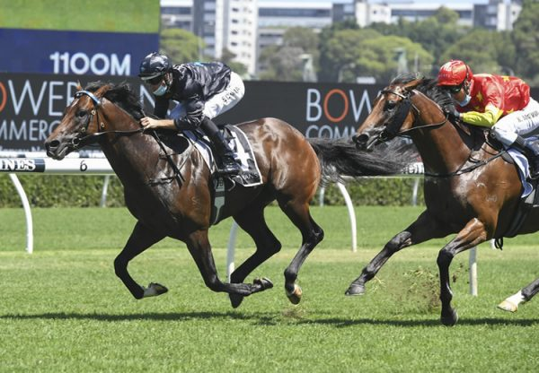 Rocketing (So You Think) winning at Randwick