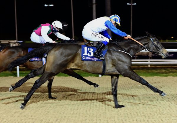 Rocky Sky (Rock Of Gibraltar) Wins Her Maiden At Dundalk
