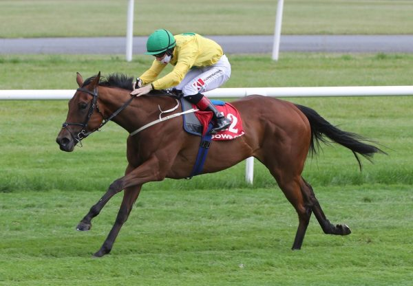 Gleneagles (Galileo) winning the National Stakes at the Curragh