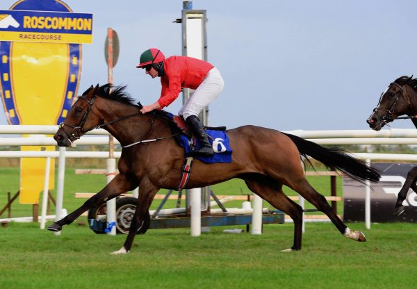 Rotten Row (Leading Light) Wins A Roscommon Bumper On Debut