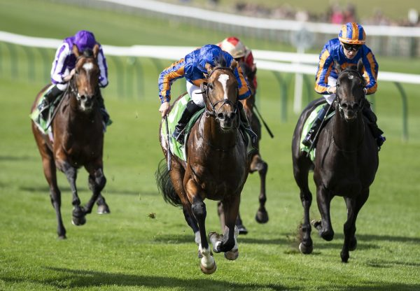 Royal Dornoch (Gleneagles) winning the Gr.2 Royal Lodge Stakes at Newmarket