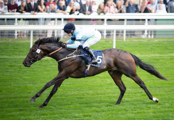 Royal Patronage (Wootton Basstt) Makes All To Win Group 3 Acomb Stakes at York