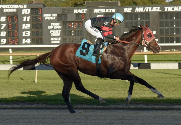Ruby Lee (Air Force Blue) Breaks Maiden At Tampa Bay
