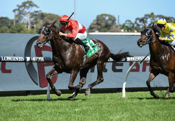 Sacramento (Pierro) Listed Parramatta Cup at Rosehill