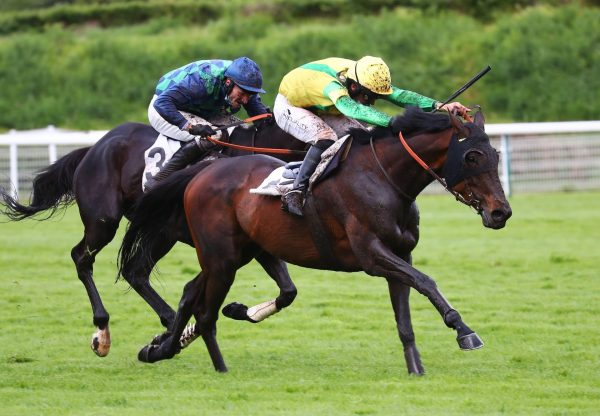 Sampark Wins The Listed Prix Saint Sauveur At Auteuil 1