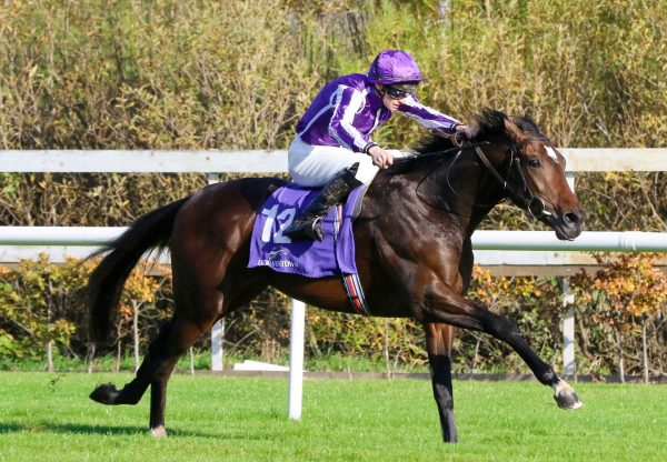 San Pedro (Gleneagles) winning his maiden at Leopardstown