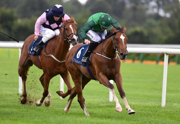 Seisai (Gleneagles) Takes The Listed Coolmore Stud Churchill Stakes At Tipperary