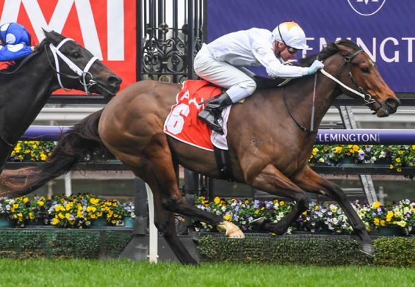 Sense Of Honour (Pride Of Dubai) winning at Flemington