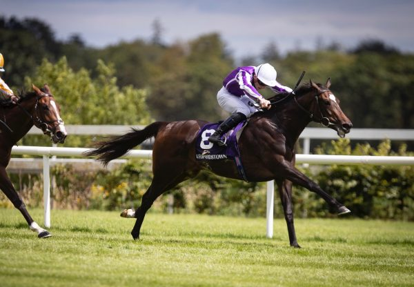 Shale (Galileo) Wins The Group 3 Silver Flash Stakes at Leopardstown