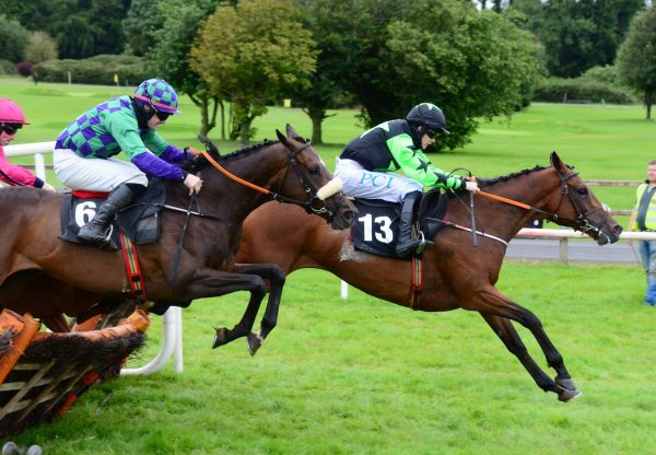 She Tops The Lot (Yeats) Wins The Mares Maiden Hurdle At Bellewstown