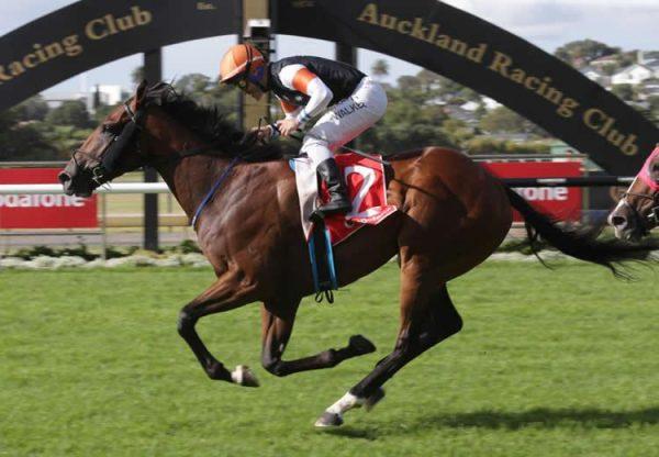 Sherwood Forest (Fastnet Rock) winning the Gr.1 New Zealand Derby