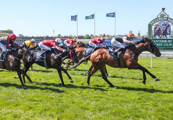 Sherwood Forest (Fastnet Rock) winning Gr.3 War Decree Stakes at Riccarton