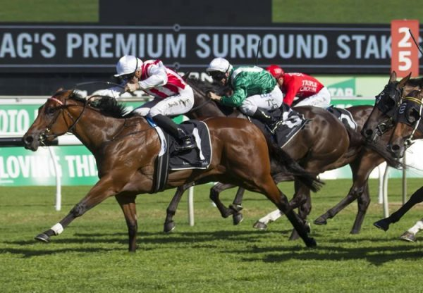 Shoals (Fastnet Rock) winning the G1 Surround Stakes at Randwick
