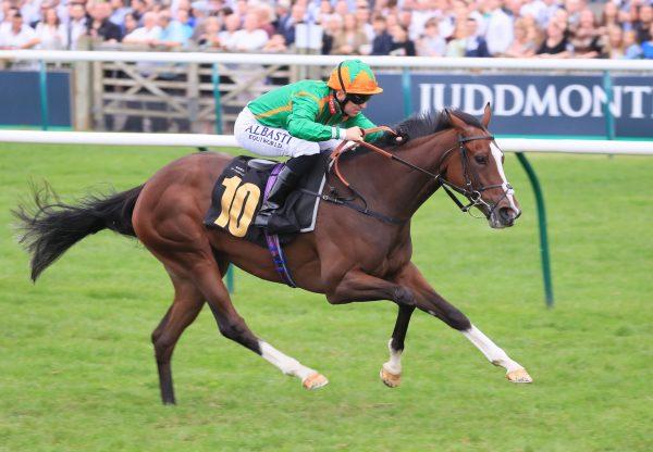 Siamsa (Starspangledbanner) Wins Her Maiden At Newmarket