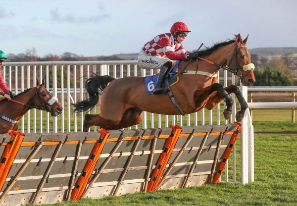Sirwilliamwallace (Getaway) Wins His Maiden Hurdle at Kelso
