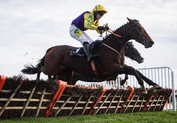 Skyace (Westerner) Wins The Grade 3 Mares Novice Hurdle at Down Royal