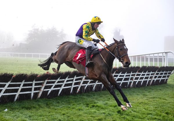 Skyace (Westerner) Wins The Listed Mares Novice Hurdle At Punchestown