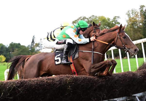 Smiling Getaway (Getaway) Wins The Four Year Old Mares Maiden At Loughanmore