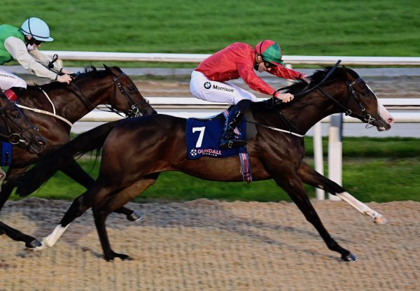 Snaffles (Churchill) Wins The Listed Star Appeal Stakes At Dundalk