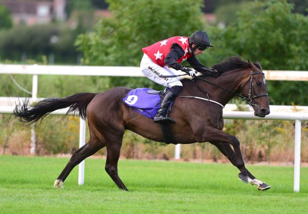 Sneaky Getaway (Getaway) winning the QR race at Leopardstown