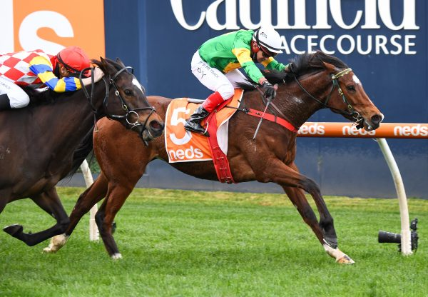 So You Assume (So You Think) winning at Caulfield