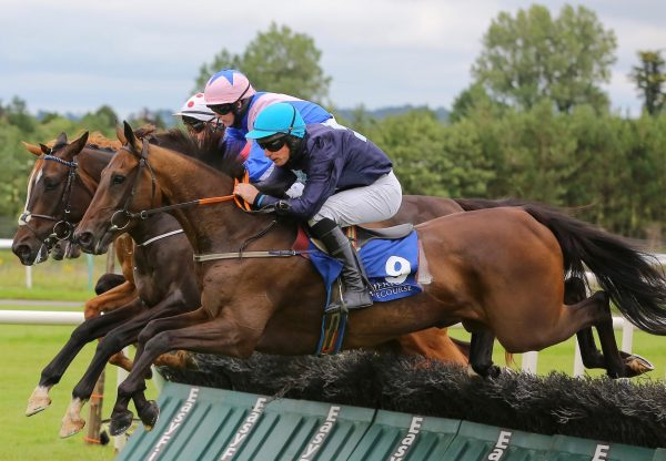 Some Spin (Getaway) winning over hurdles at Limerick
