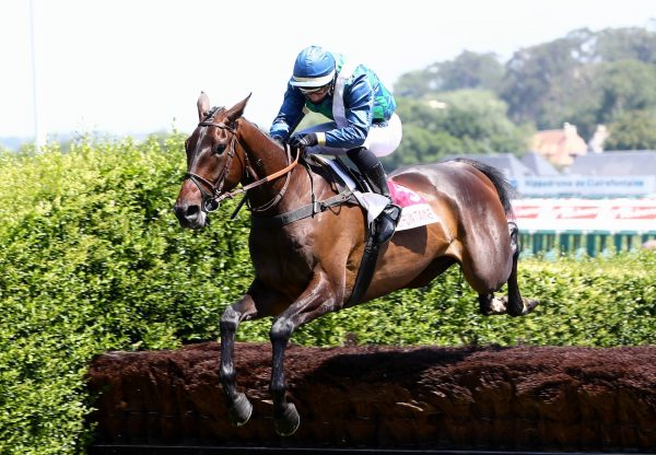 Sorcier Du Roi (Getaway) Wins On Debut at Clairefontaine
