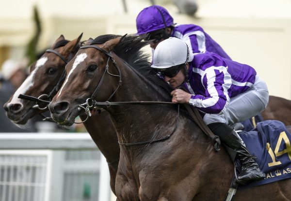 South Pacific Wins The King George V At Royal Ascot
