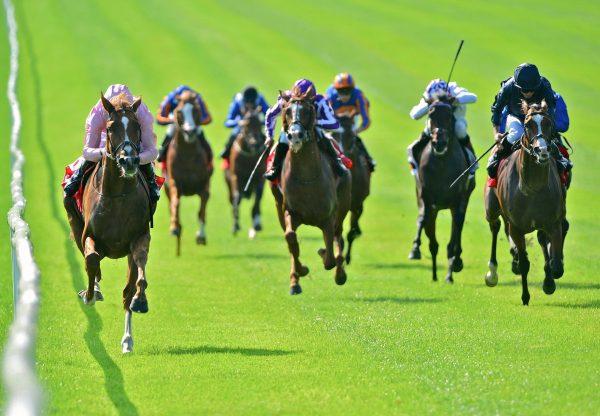 Sovereign (Galileo) Wins The Irish Derby