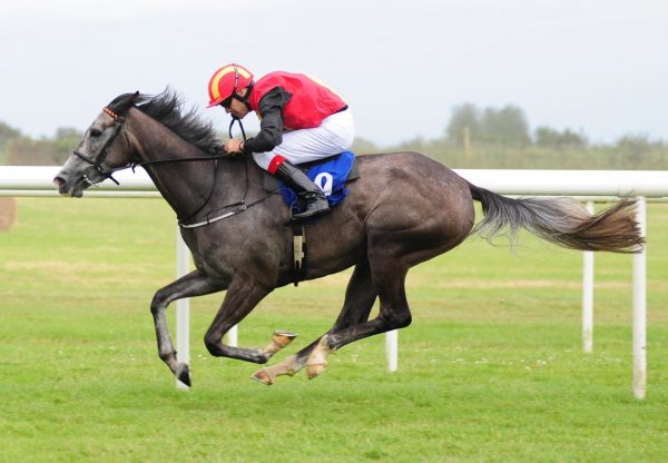 Sovereigns Bright Becomes The Latest Winner By No Nay Never