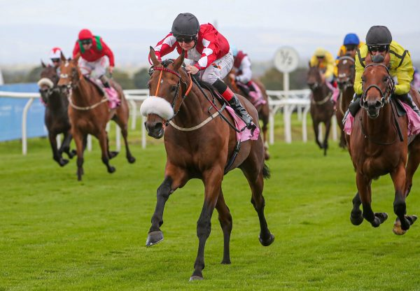 Strawman Becomes The Latest Winner By Starspangledbanner