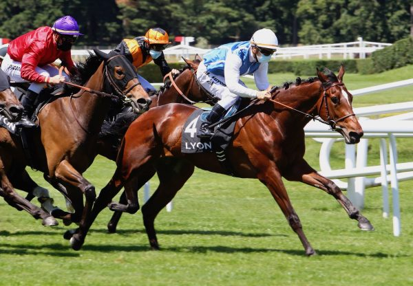 Suffrage (Mastercraftsman) Wins At Lyon