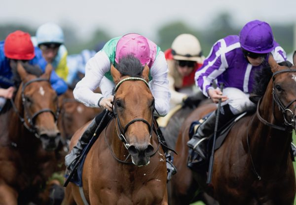 Surefire (Fastnet Rock) Wins The King George V Stakes at Royal Ascot