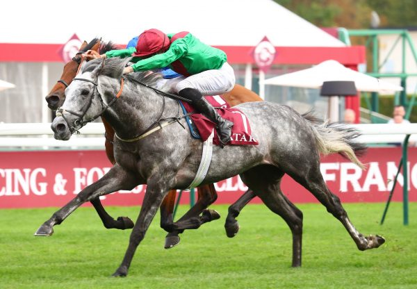 Technician (Mastercraftsman) Wins The Gr.2 Prix Chaudenay at ParisLongchamp