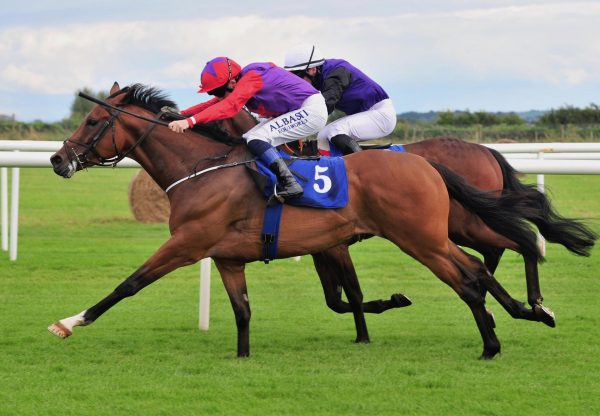 Teed Up (Gleneagles) Wins His Maiden At Roscommon