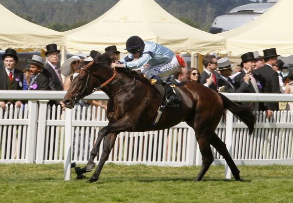 Dance To Dubai (Pride Of Dubai) wins at Sandown