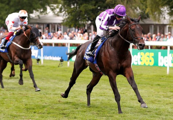Piece Of Paradise Adds To Tremendous Day For Holy Roman Emperor