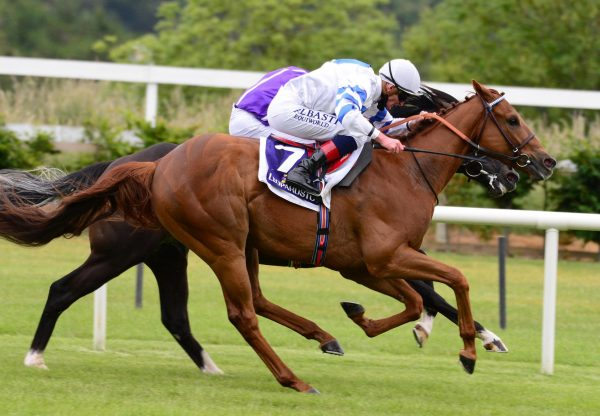 Ten Year Ticket (Rock Of Gibraltar) winning the Listed Trial Stakes at Leopardstown