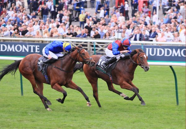 Mongolian Khan (Holy Roman Emperor) winning the G1 New Zealand Derby at Ellerslie