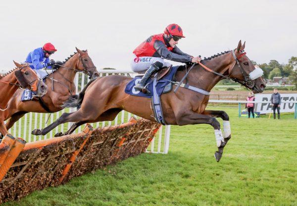 The Blame Game (Getaway) Wins The Novice Hurdle At Sedgefield