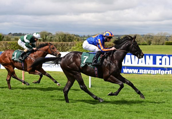 The Entertainer (Caravaggio) winning at Navan