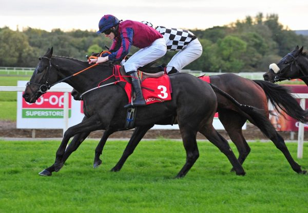 The Little Yank Doubles Up At Cork