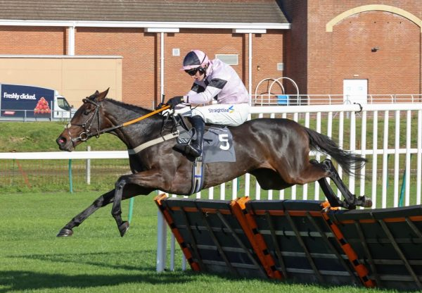 The Player Queen (Yeats) Wins Her Maiden Hurdle At Ayr